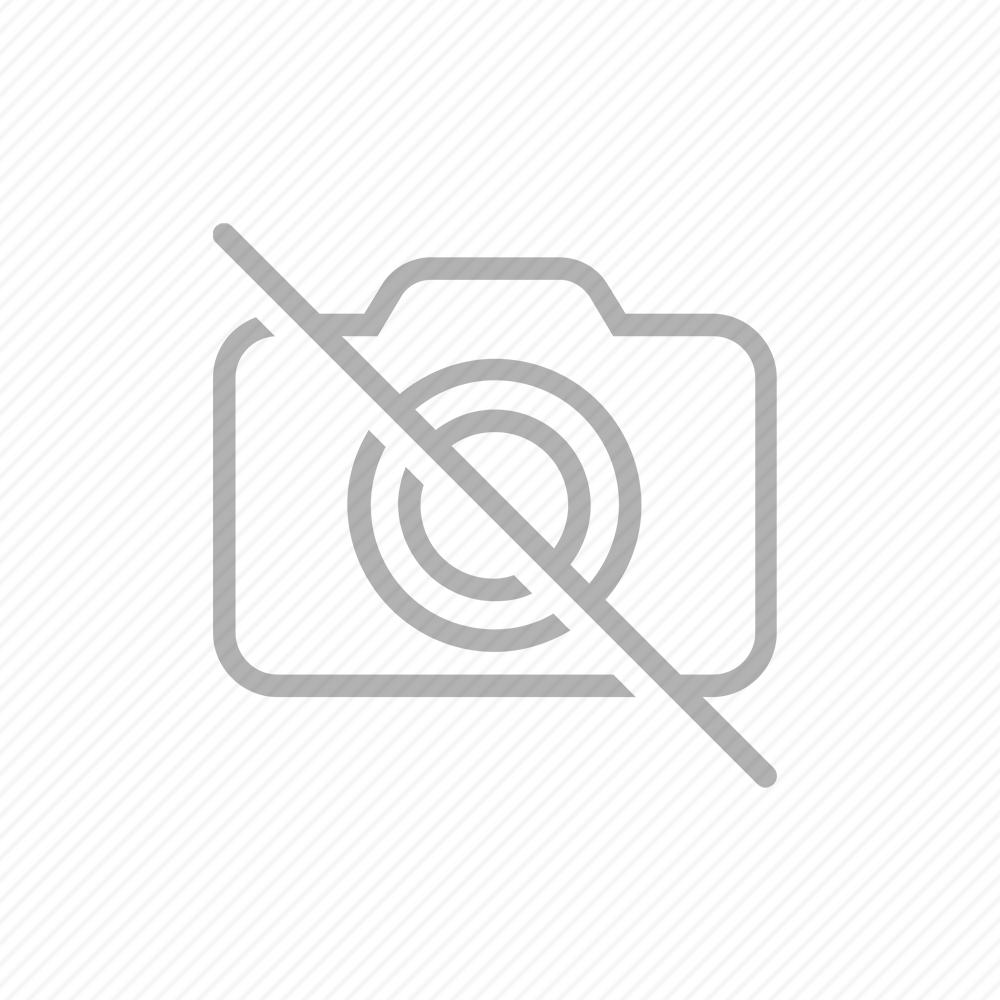 Danielle - Lantisor Argint 38 centimetri